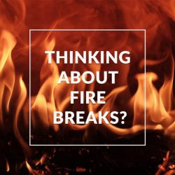 thinking about Fire Breaks